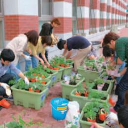 『新エコミドリデザイン -キャンパス建築緑化の未来像』プロジェクト