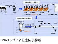 DNAチップによる遺伝子診断